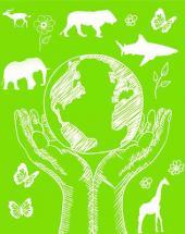 ¿Porque conservar la biodiversidad?